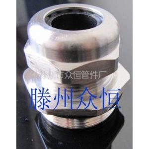 供应大量供应不锈钢电缆接头,电缆固定头