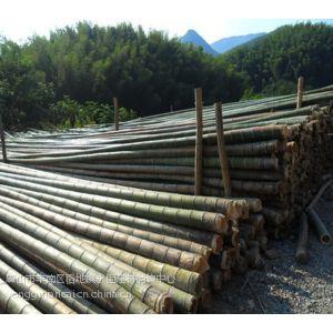 供应唐山竹竿、唐山杉木杆、唐山防腐木