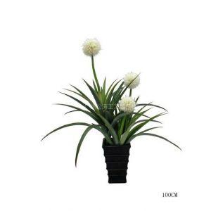 仿真白色大球兰 室内装饰PU小摆件仿真植物