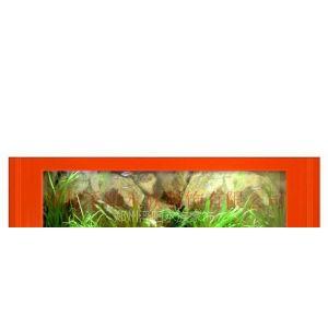 郑州浮阳生态水族画,壁画式鱼缸,热带鱼壁挂水族馆