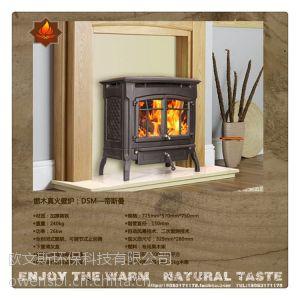 供应武汉欧文斯新品家居取暖装饰 独立式燃木壁炉帝斯曼 别墅实木取暖