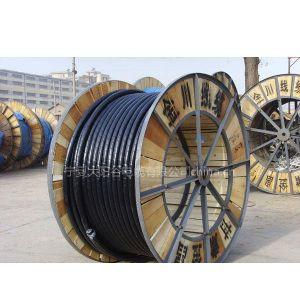 甘肃金川电线电缆厂宁夏销售部 宁夏金川电缆 银川金川电缆