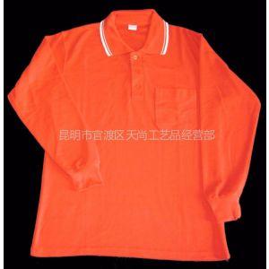 供应昆明广告衫定做,昆明POLO衫定做,云南促销衫定做,云南广告衫定做