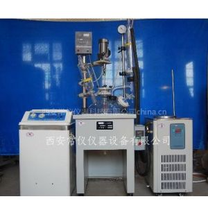 供应多功能反应器(更适合用于实验室)