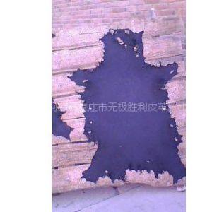 供应河北牛头皮,狗皮,广州牛头皮手套革