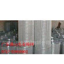 供应广东兆业筛网不锈钢,镀锌电焊网,焊接网