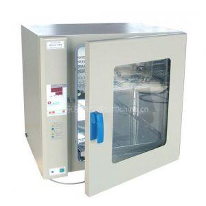 供应电热鼓风干燥箱,上海博迅电热鼓风干燥箱