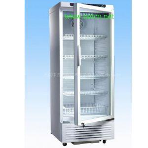 供应医用冰箱 型号:ZM814YC-260L库号:M231757