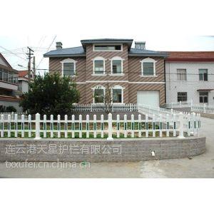 供应潍坊pvc草坪护栏、山东塑钢花坛栏杆照片、绿化栅栏价格