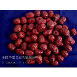 供应山东红枣、金丝枣、新疆枣、无核枣产地供应厂家