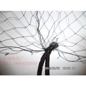 供应蝙蝠网防鸟网尼龙网鸟网防护网鸡网 厂家直销定做各种
