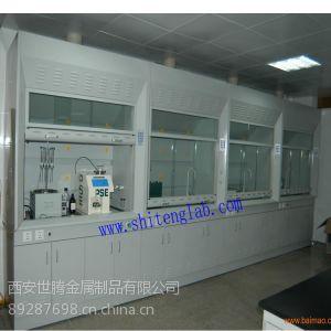 西安世腾厂家供应高品质实验室全木通风柜 通风橱等实验用品 欢迎来电咨询