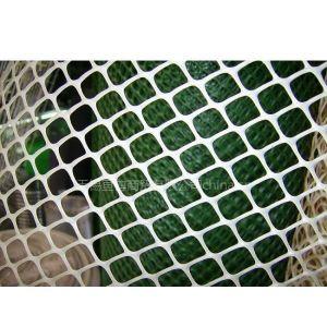 供应杭州/宁波/温州/嘉兴/湖州【各种规格经久耐用】塑料平网/养鸡鸭用网//水产业用网【厂家直销】