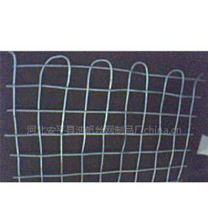 供应经纬网,煤矿支护网,矿用锚网,经纬防护网
