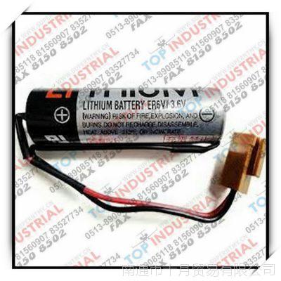 ER6V,3.6V,TOSHIBA电池