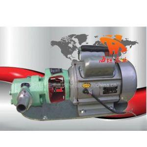 供应WCB型微型齿轮油泵
