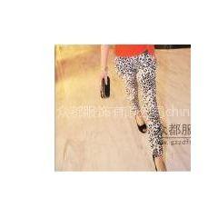 供应郑州哪里便宜潮流韩版女装哈伦裤批发上海七浦路哈伦裤批发网