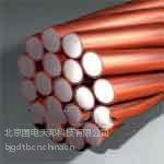供应供应镀铜钢绞线接地极/镀铜钢扁钢/石墨接地模块厂家报价直销