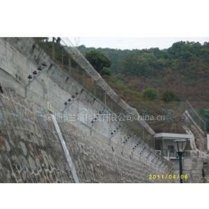 深圳兰星LX-2010高压脉冲电网