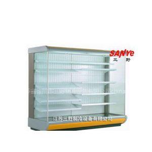 供应D型欧款风幕柜  超市 饭店 展示用