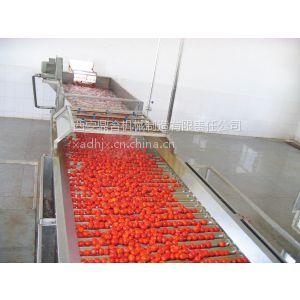 西安鼎合果蔬产品GXJ-10T滚杠拣选机