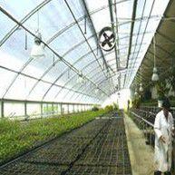 供应寿光日光温公司室大棚建设/蔬菜大棚建设/高端温室