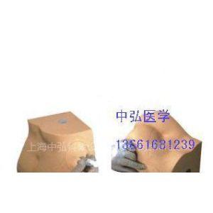 供应ZH-F6臀部注射实习模型、臀部注射模型