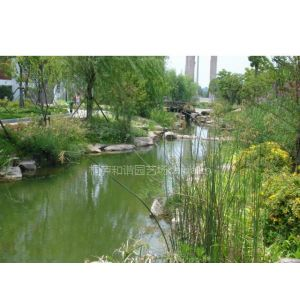 供应自然景观石,园林景观石,景观自然石,
