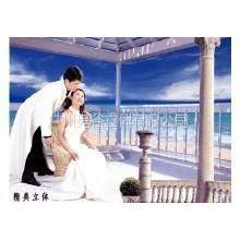 供应三维立体画技术培训 3D立体画技术培训 立体婚纱画技术培训