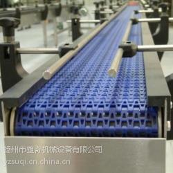 供应塑钢链板输送机