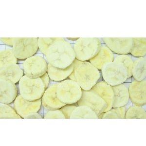 供应冻干香蕉片 冻干香蕉丁 冻干香蕉 冻干香蕉粉 FD香蕉