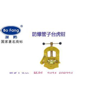 供应渤防90/125/150MM防爆台虎钳 (本安型防爆人体静电释放器)