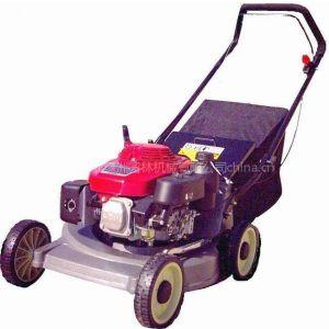 供应各种草坪机,本田160剪草机,手推割草机,油锯,除草机,打草机等园林机械销售维修