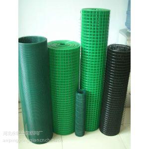 供应电焊网 浸塑电焊网 浸塑电焊网片