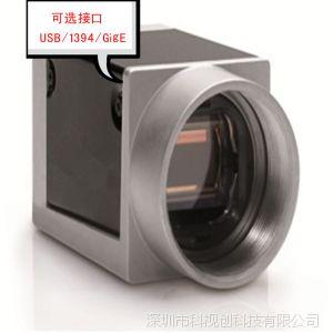 供应高清1394黑白CCD工业相机