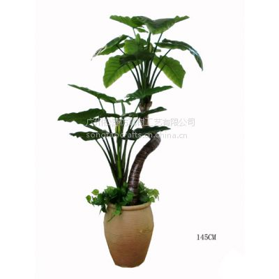 仿真仙芋盆栽 绿色植物 滴水观音 室内景观装饰盆栽