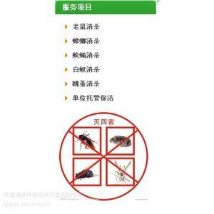 供应天津灭蟑螂公司哪家好哪家最专业?,清波杀蟑螂,除蟑螂