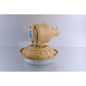 供应SBD1102-YQL40免维护节能防爆灯 防爆免维护无极电磁感应灯 渝荣防爆节能灯