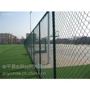 供应张家港体育场围网,体育场围网厂家,体育场围网价格。