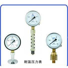 青岛华青(集团)耐温压力表/YTW-100(图)