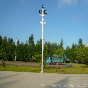 供应海南路灯杆,佛山路灯电线杆厂家,多少钱一根灯杆