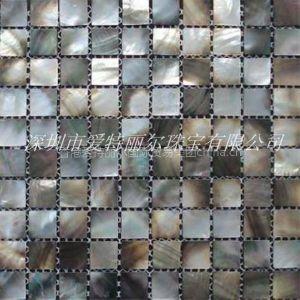 供应各种贝壳马赛克 贝宝建材 环保装饰材材