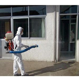 肇庆市杀虫灭鼠公司肇庆市专业杀虫公司