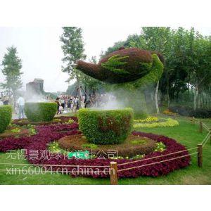 供应无锡植物造型公司、无锡景观植物造型设计、无锡植物雕塑公司