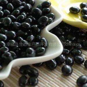 供应厂家促销黑豆类杂粮王