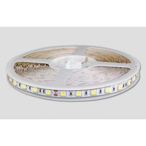 供应供应LED灯带/LED灯带批发/澄通光电/SMD5050/低压12V/60灯柔性光亮