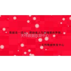 供应永久删除数据恢复-恢复删除照片-天津数据恢复公司