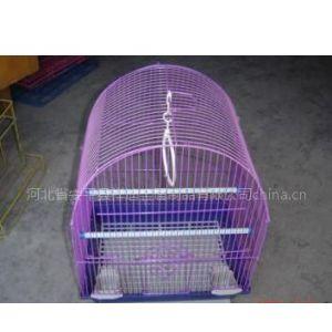 供应鸟笼 鹦鹉笼