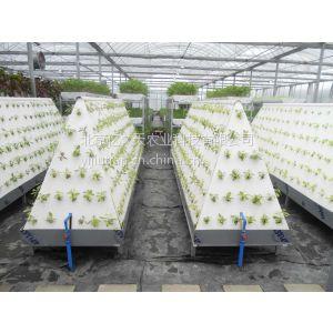 无土栽培设施 无土栽培设备 立体气雾式无土栽培设施