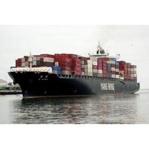 供应大连到中山海运运输